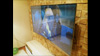 Защитный экран на гнутый телевизор 65 дюймов